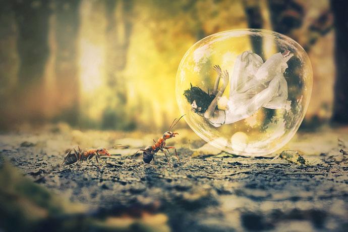 Hormigas Significado Espiritual