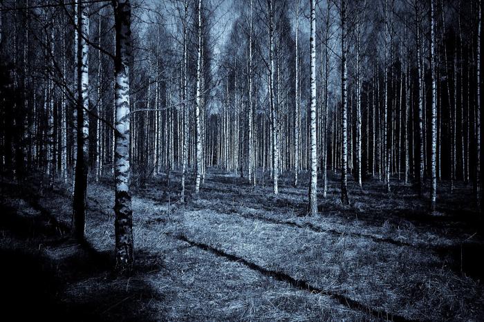 Mundo Esotérico y Paranormal