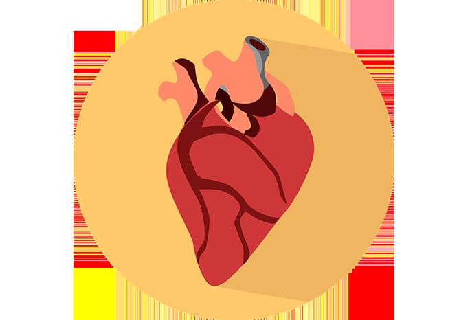 Insuficiencia Cardiaca Descompensada