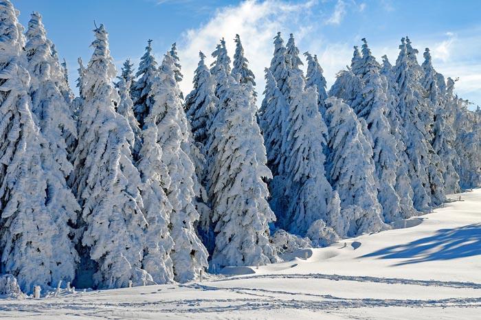 ¿Cuál es el significado de Soñar con Nieve?