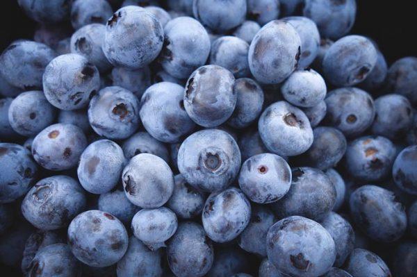 Arándanos, propiedades y beneficios de este Alimento