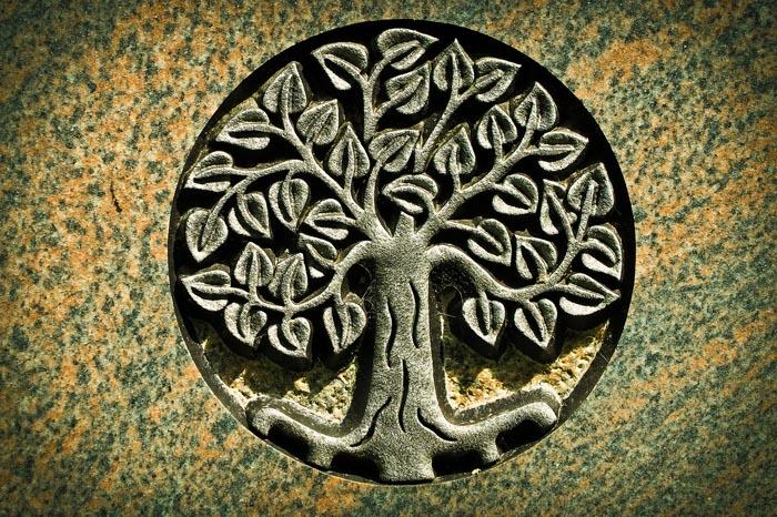 Árbol de la vida: Significado y origen