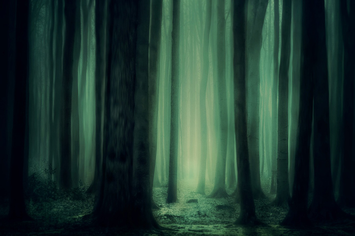 Qué es la Magia Verde
